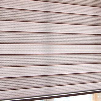 Rhinestones zebra shade