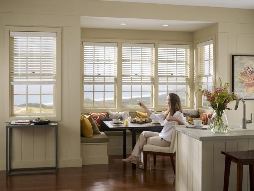 horizontal window blinds motorized somfy